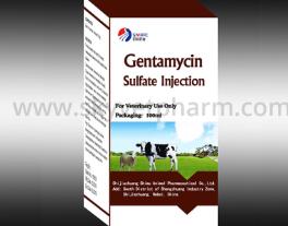 What Is Gentamicin Sulfate?