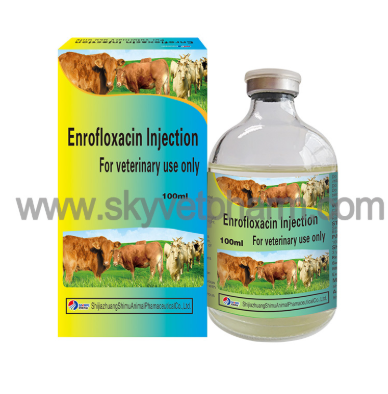 Enrofloxacin For Chicken Bacterial Disease