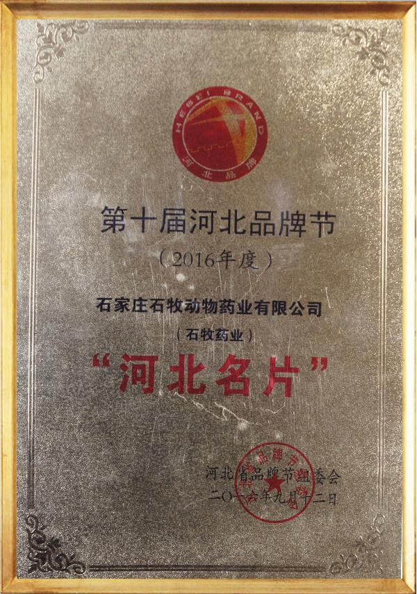 Hebei Brand