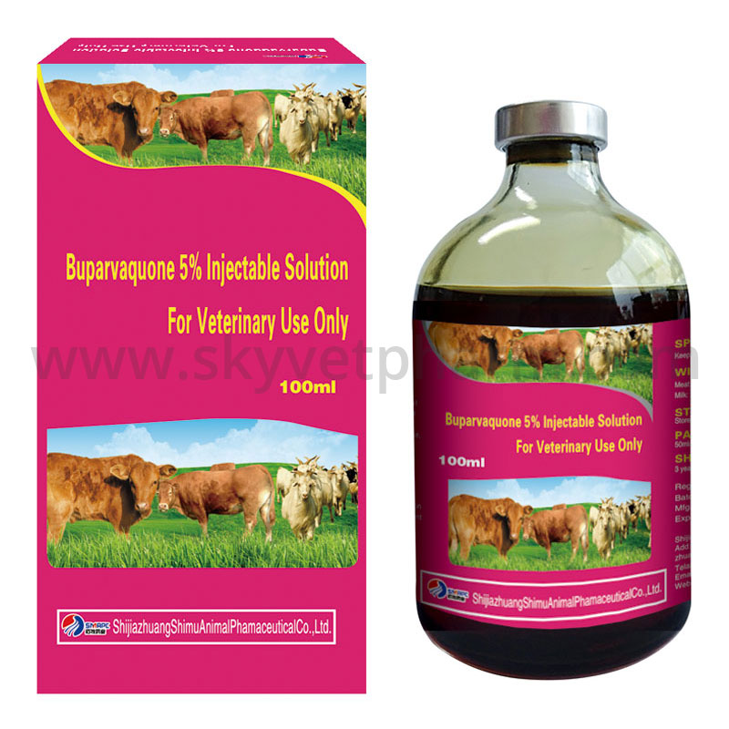 Buparvaquone 5% Injectable Solution