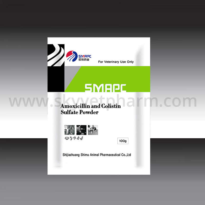 Amoxicillin and Colistin sulfate powder