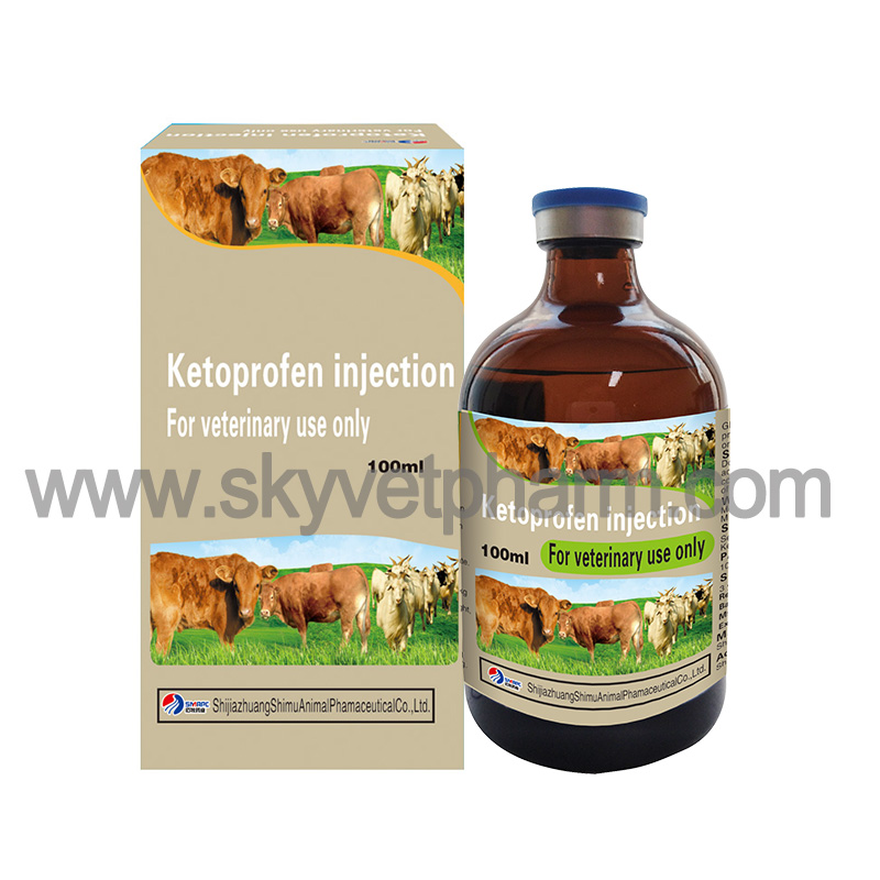 Ketoprofen injection