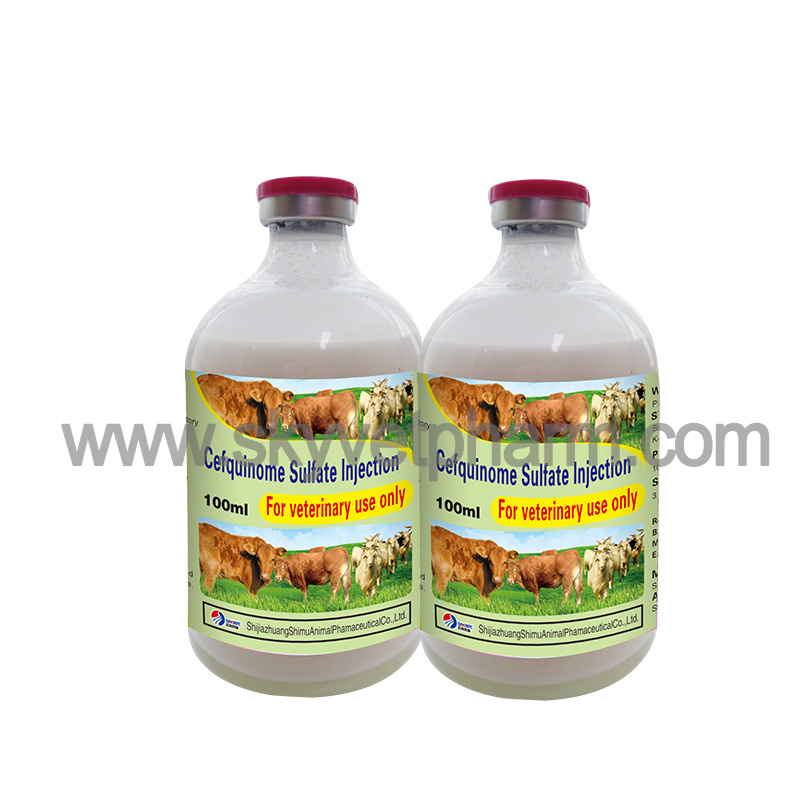 Cefquinome Sulfate Injection